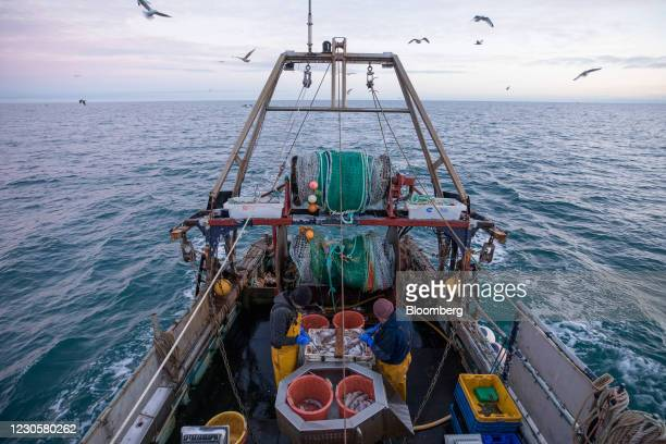 Fishermen work to sort fish from the boat 'About Time' in the English Channel from the Port of Newhaven in Newhaven, U.K. On Sunday, Jan. 10, 2021....