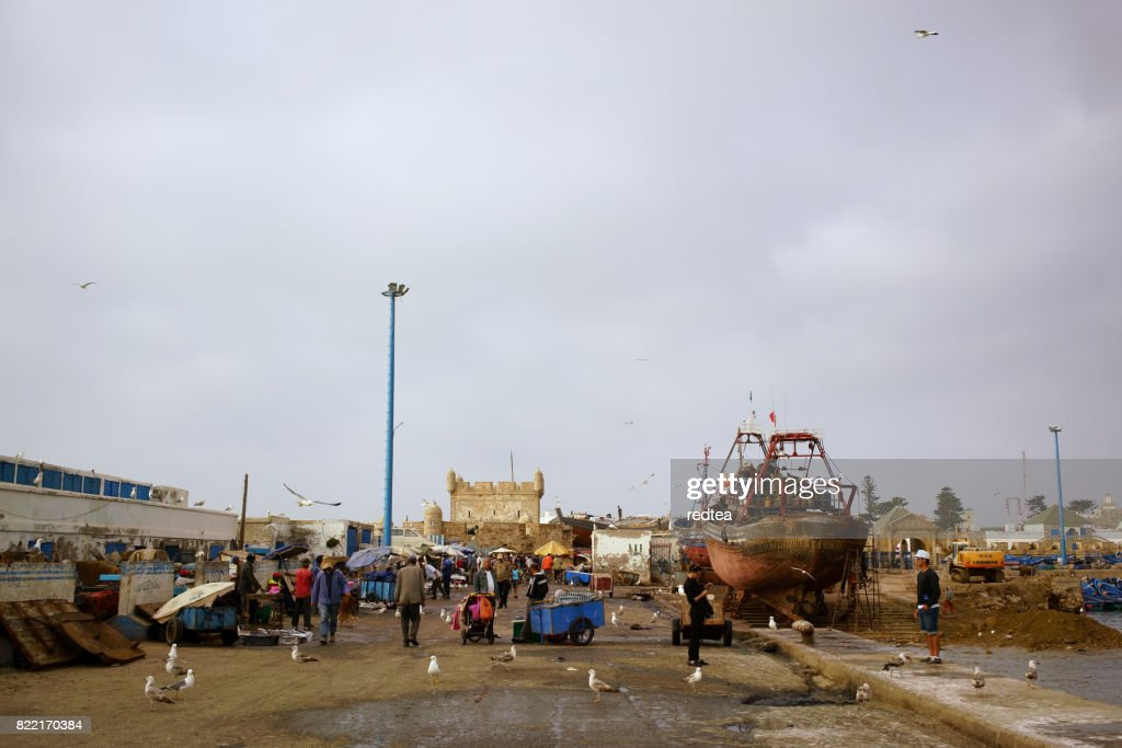 Fishery town of Essaouira, Morocco : Stock Photo