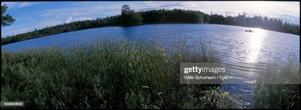 Fish-Eye Lens View Of Lake And Grass In Foreground : Foto stock