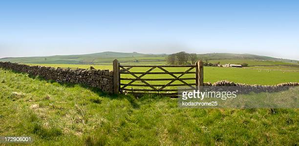 Fish-eye view of an ancient stone farm fence with wide field