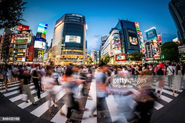 Fisheye View of Shibuya Crossing at Dusk