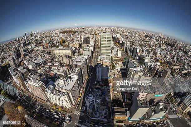 Fisheye View of Tokyo