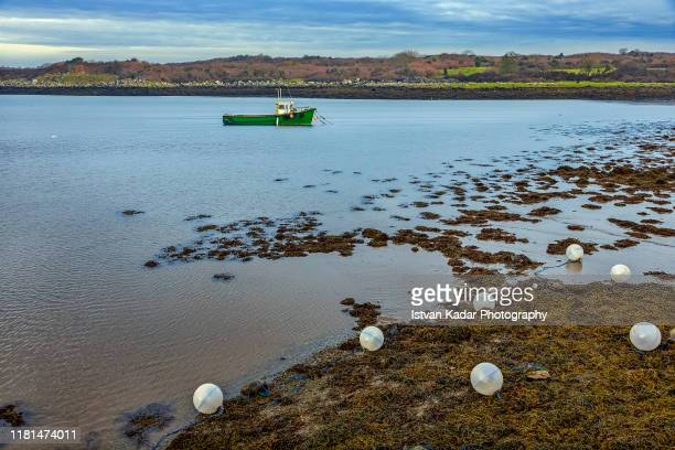 fishing balls, kinvarra, ireland - quayside stock pictures, royalty-free photos & images