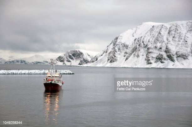 fishing boat at coast of honningsvåg, northern norway - coastline stock pictures, royalty-free photos & images