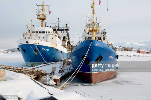 fishing boat at frozen fjord of båtsfjord, finnmark county, norway. - feifei cui paoluzzo stock pictures, royalty-free photos & images