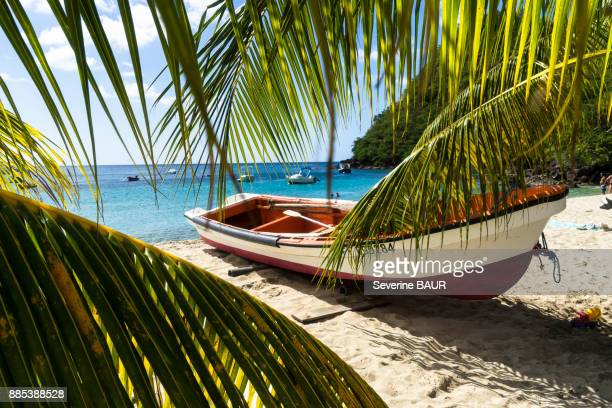 fishing boat, bourg des anses darlet, martinique, france - martinique stock photos and pictures