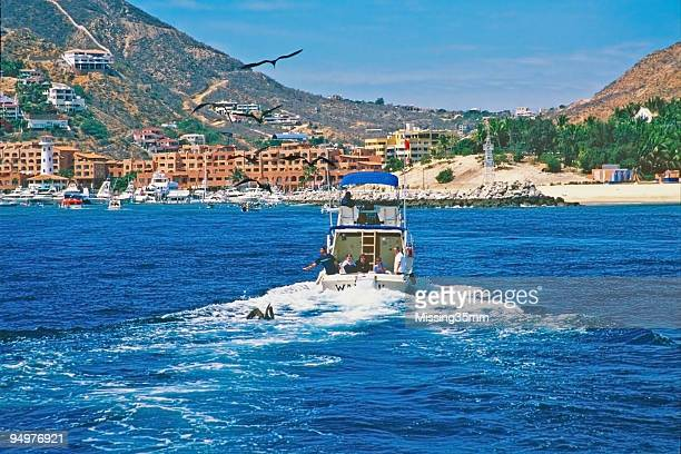 Fishing Boat Heads into Cabo San Lucas Harbor