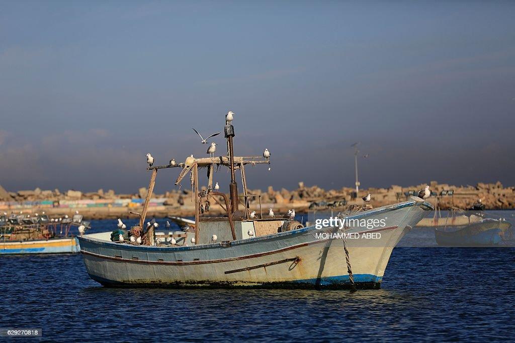 PALESTINIAN-GAZA-DAILY LIFE : News Photo