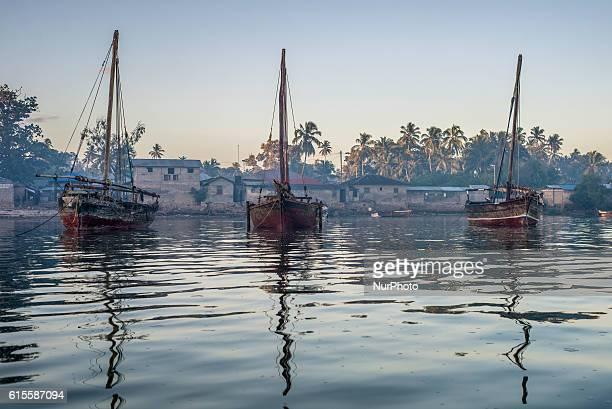 Fishing boat near Mkokotoni fish market Zanzibar Tanzania
