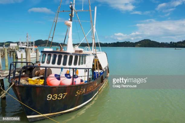 Fishing boat on Coromandel Harbour (McGregor Bay).