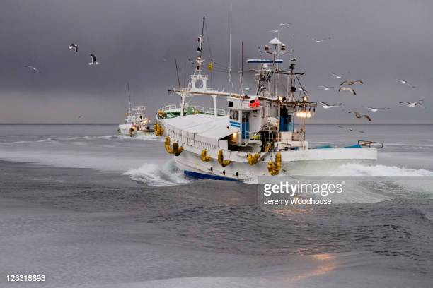 60 Top Trawler Pictures, Photos, & Images - Getty Images