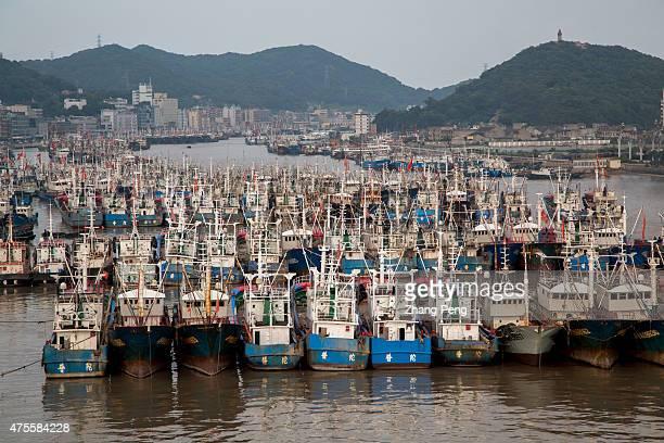 SHENJIAMEN ZHOUSHAN ZHEJIANG CHINA Fishing boats anchored in the port From June1 the fishing boats in Zhoushan Shenjiamen fishing port will begin...