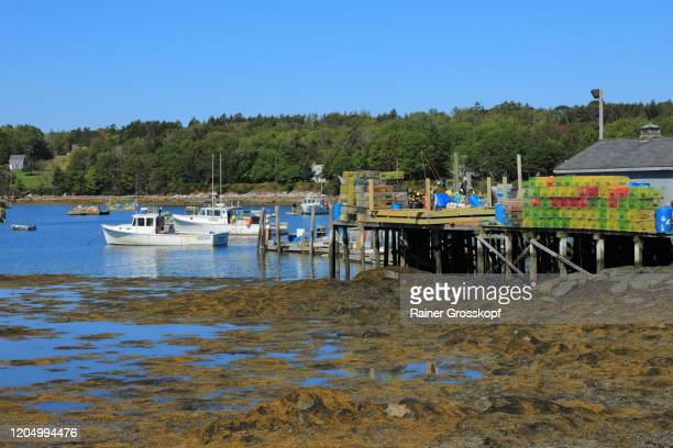 fishing boats and a pier with many lobster traps in a tranquil bay at low tide - rainer grosskopf stock-fotos und bilder