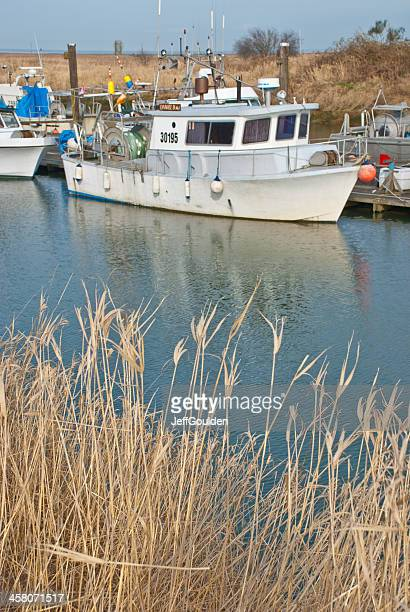 Fishing Boats Tied up at a Dock