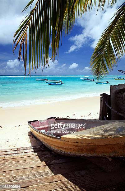 fishing boats at shore, caribbean - bridgetown barbados stock photos and pictures
