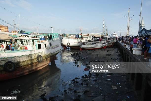 Fishing boats at the ebb tide in Guajara bay in Brazil