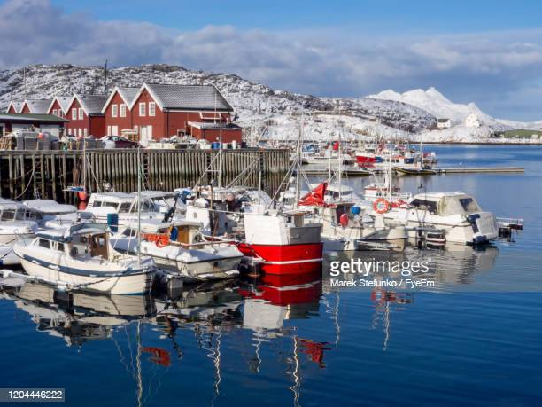 fishing boats during the winter in bodo harbor - marek stefunko stock pictures, royalty-free photos & images