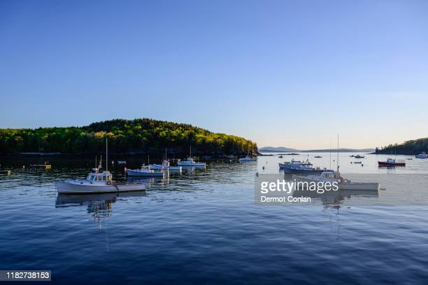fishing boats in bar harbor, mount desert island, usa - メイン州 ストックフォトと画像