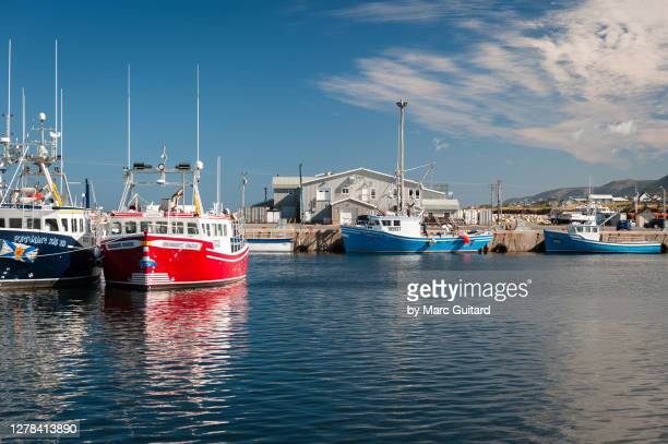 fishing boats in cheticamp, cape breton highlands national park, nova scotia, canada - cape breton island stock pictures, royalty-free photos & images