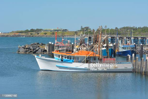 fishing boats in coffs harbour nsw australia - coffs harbour stock pictures, royalty-free photos & images