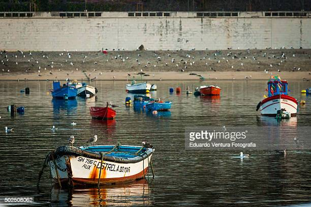 Fishing boats in Sines, PORTUGAL