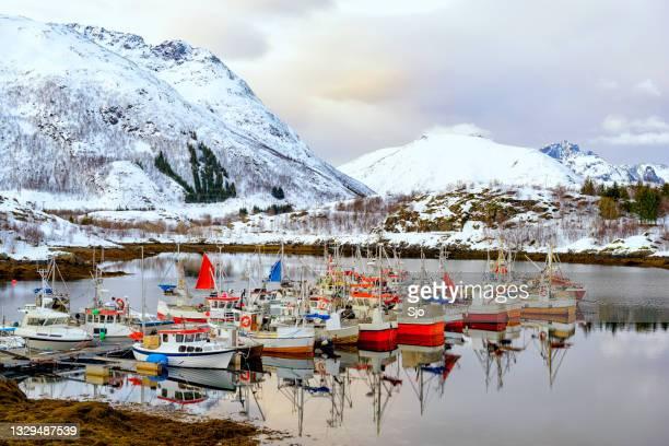 """fishing boats in the austnesfjorden in winter in the lofoten in norway - """"sjoerd van der wal"""" or """"sjo""""nature stockfoto's en -beelden"""