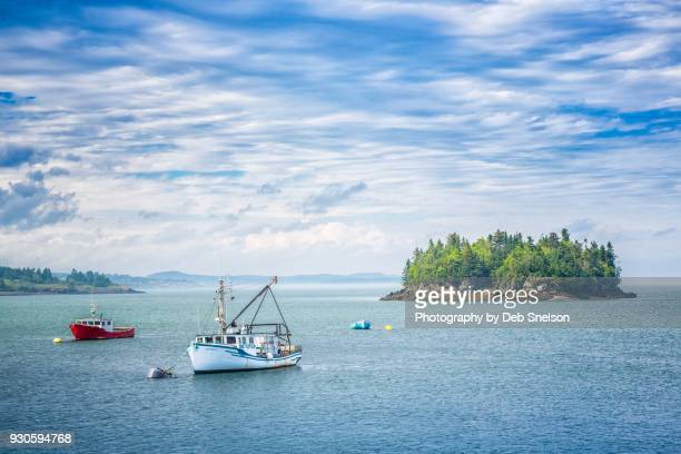 fishing boats in the bay of fundy at lubec maine - lubec stock photos and pictures