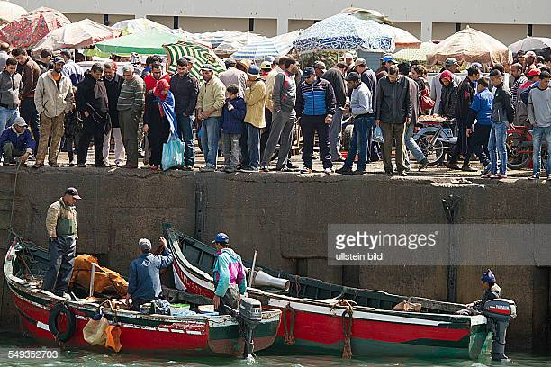 fishing boats in the fishing port in El Jadida Morocco