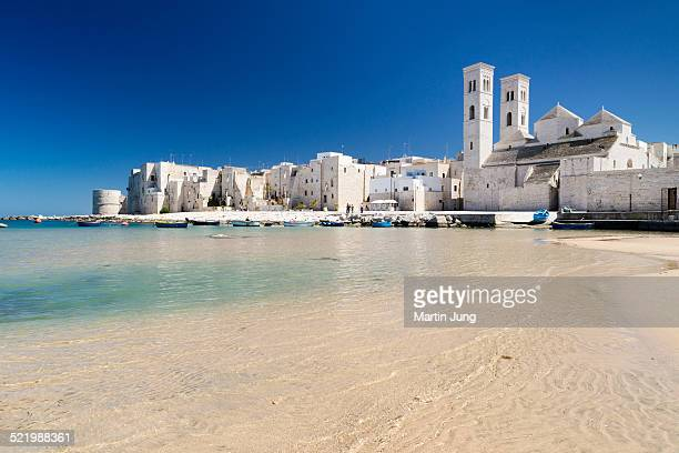 fishing boats in the harbor, historic centre, romanesque old cathedral, san corrado and torrione passari, molfetta, bari province, apulia, italy - les pouilles photos et images de collection