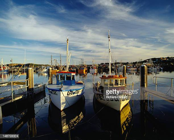 fishing boats moored at coffs harbour in new south wales. - coffs harbour stock pictures, royalty-free photos & images
