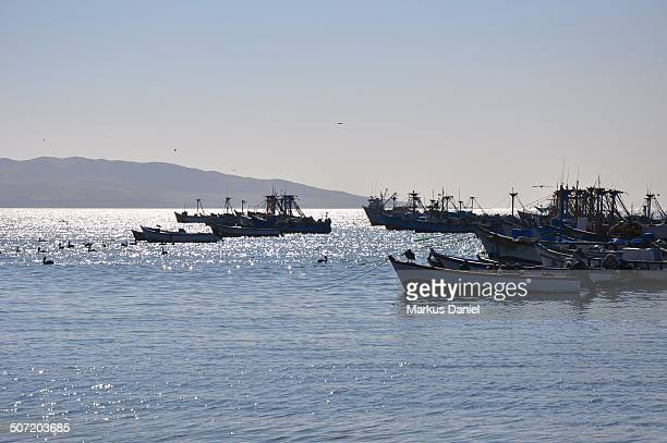 "fishing boats - ""markus daniel"" stock pictures, royalty-free photos & images"