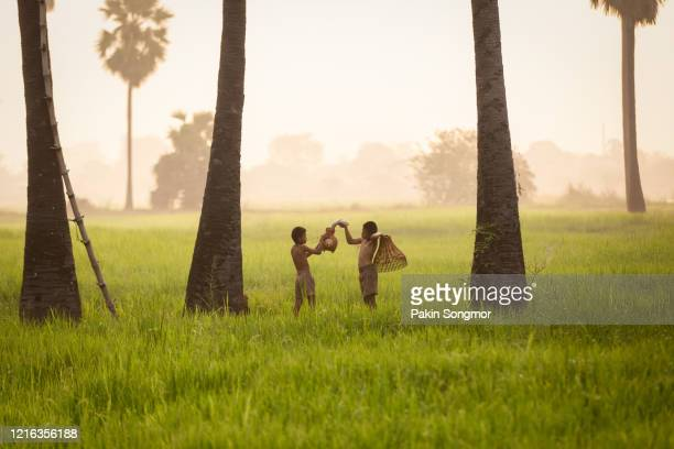 fishing boy asian farmer people on rice green field during morning time - simple living stock pictures, royalty-free photos & images