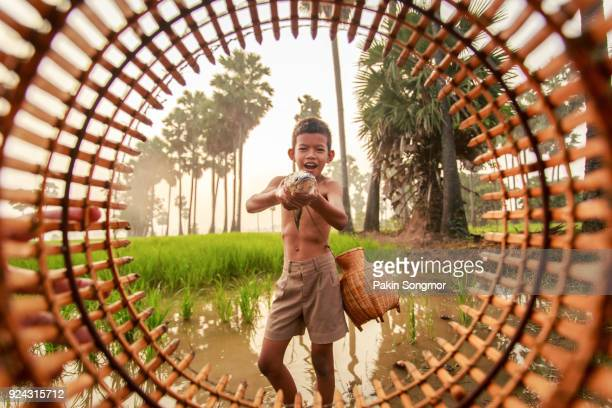 Fishing boy asian farmer people on rice green field during morning time