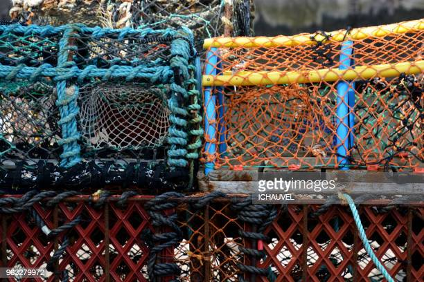 fishing colourful bin scotland - poisson avril photos et images de collection