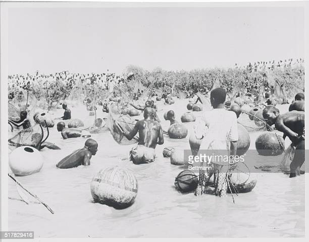 Fishing Festival Argungu Nigeria Fishing in Argungu is not done from boats The men go right into the water with their buoylike pots and nets to catch...
