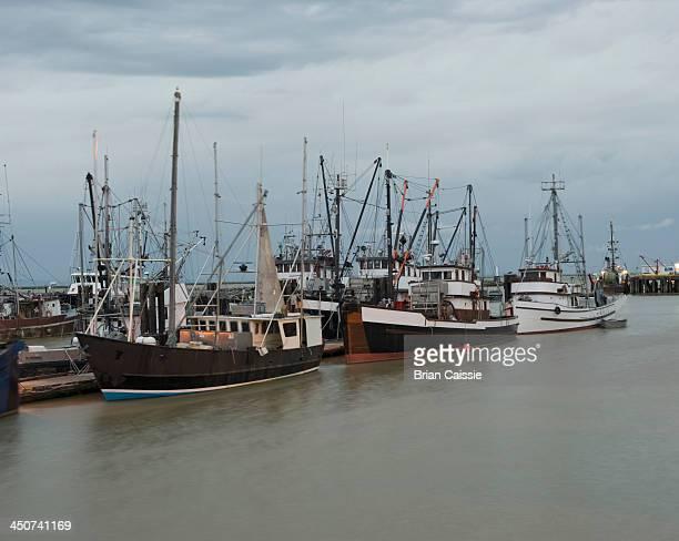 fishing fleet at richmond, british columbia, canada, - richmond british columbia stock photos and pictures
