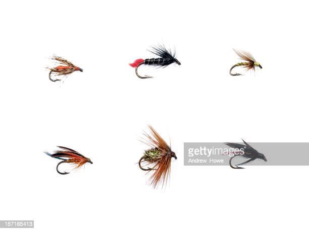 Köder fürs Fliegenfischen