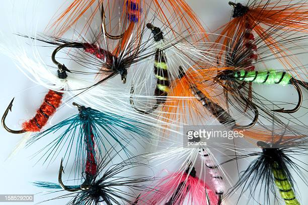 fishing flies - big game fishing stock photos and pictures