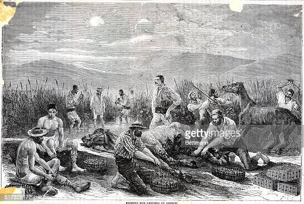 Fishing for leeches in Greece Undated engraving