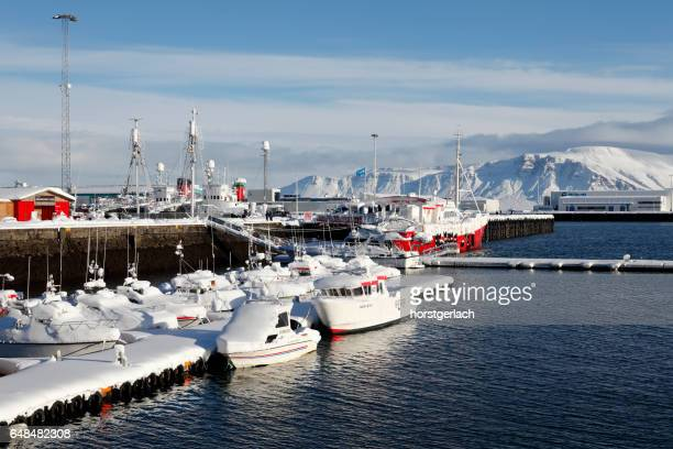 Fishing harbor of Reykjavik, Iceland