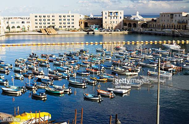 Fishing harbour in Algiers
