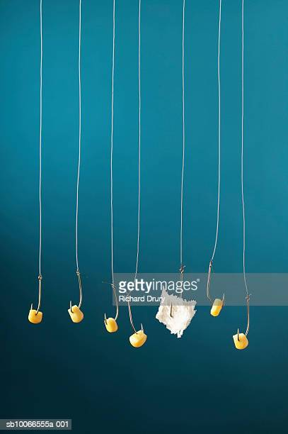 Fishing hooks with kernels of corn and one with bread