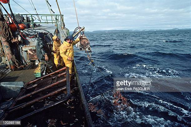 Fishing in Alaska in United States Crab fishing boat for king crab Bering Sea