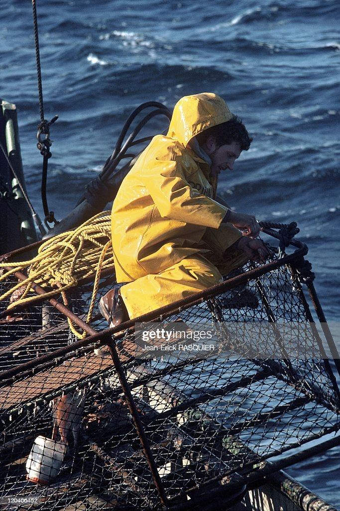 Fishing in Alaska in United States - Fisherman on a crab boat for king crab, Bering Sea.