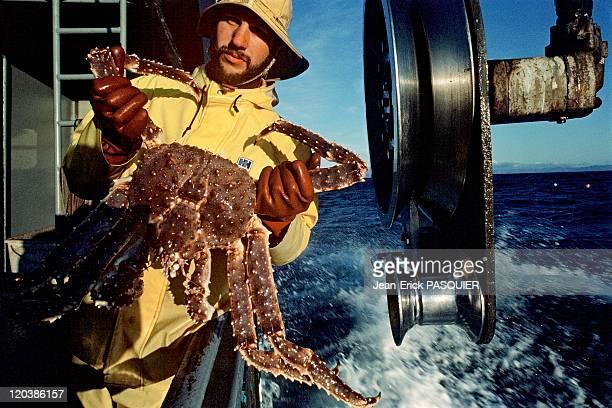 Fishing in Alaska in United States - Fishing king crab, Bering Sea.