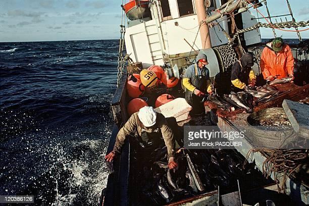 Fishing in Alaska in United States Southeast black cod fishing