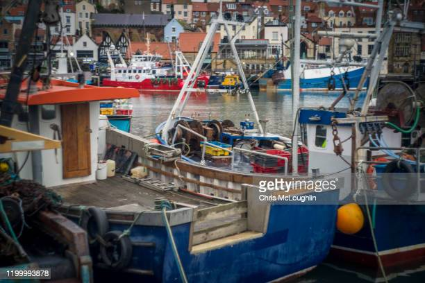 fishing industry in scarborough, north yorkshire. uk - fishing industry stock pictures, royalty-free photos & images