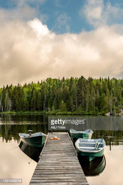 fishing lake in early morning. - quebec stock pictures, royalty-free photos & images