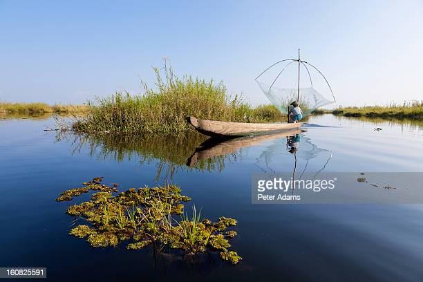 Fishing, Loktak Lake, nr Imphal, Manipur, India