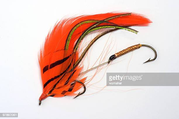 fishing lure - fly casting stock pictures, royalty-free photos & images